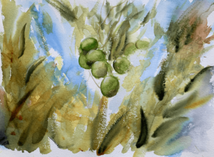 Olives by Zuzana Edwards, Abstract olive tree, watercolour painting 16 x 12 inch (41.5 x 31 cm).