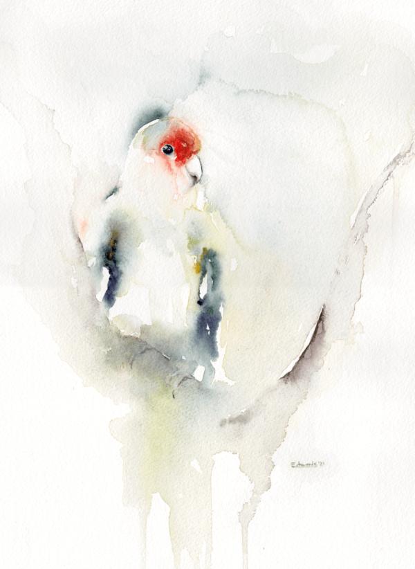 Lovebird by Zuzana Edwards, minimalist animal - bird painting, 11 x 14 inch (28 x 38 cm).